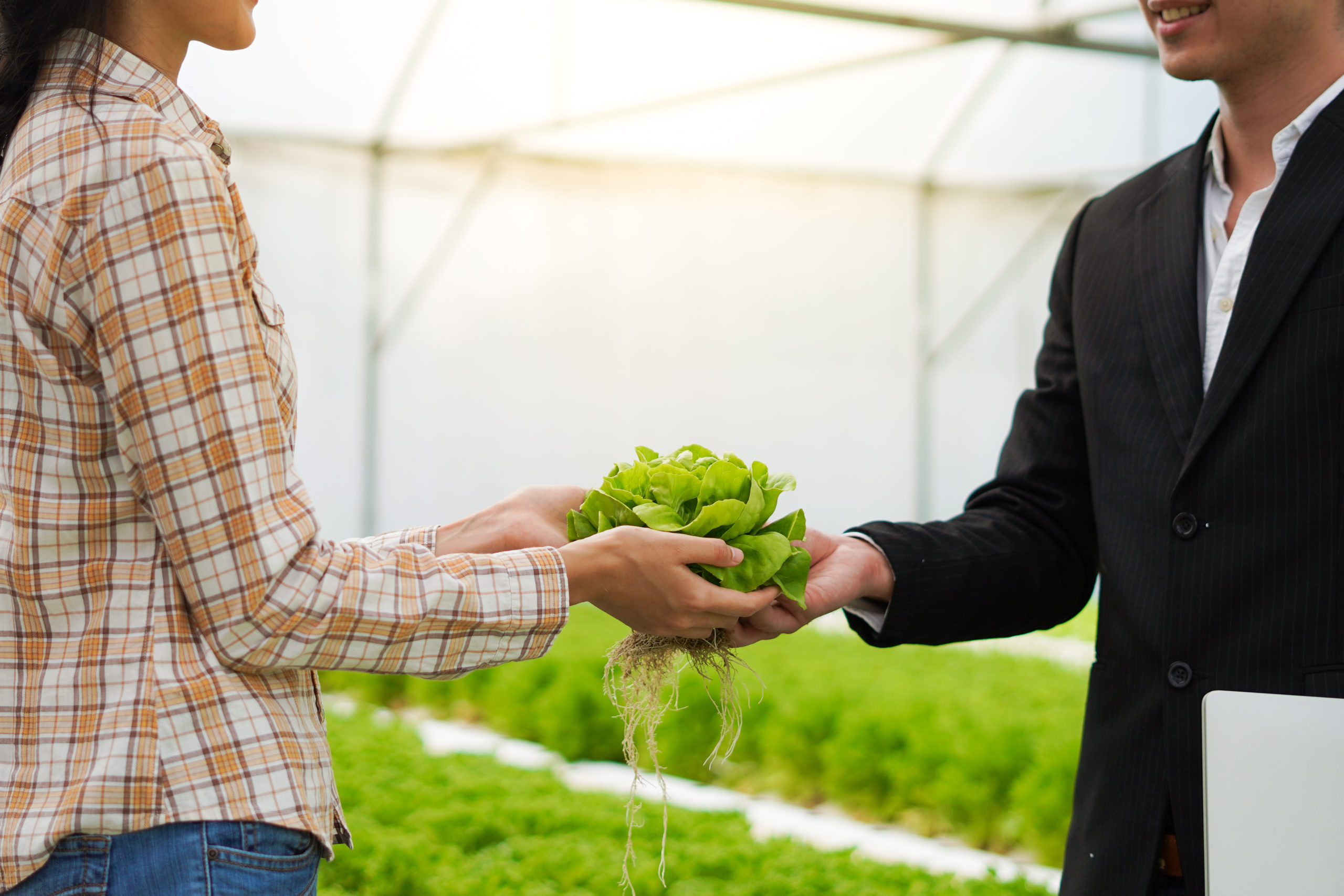 farmer-deal-and-agree-with-businessman-to-supply-and-sell-farm-products